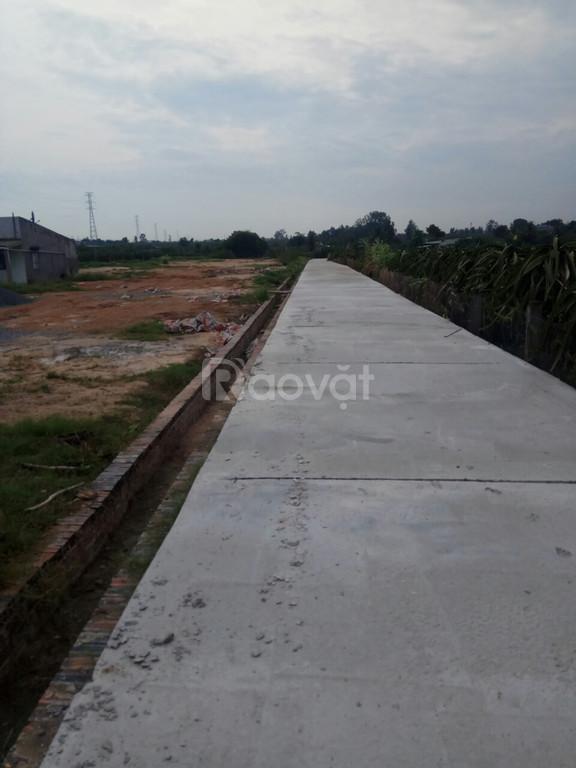 Đất 29x30 full thổ cư, hẻm bt 4,5m – tt Thuận Nam
