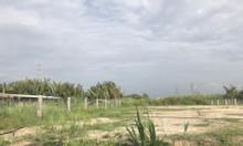 Bán lô đất vườn gần GS Metro Phạm Hữu Lầu, Nhà Bè, 1400m2