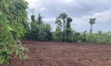 Bán đất nền thổ cư xã Đá Bạc, Châu Đức giá 2,5tr/m2