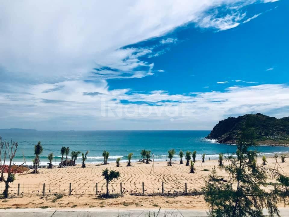 Sở hữu đất biển Xuân Cảnh Sông Cầu Phú Yên - hưởng CK khủng lên tới 4%