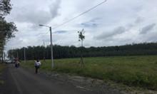 Đất Bình Phước giá rẻ - Chỉ 460 triệu nền 250m2 - Sổ sẵn