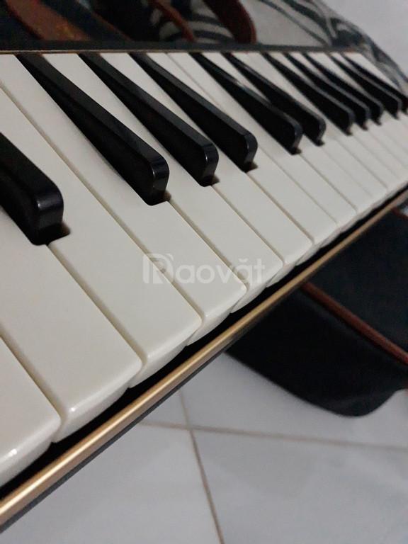 Kèn Melodica Suzuki M37C Nhật Bản xách tay