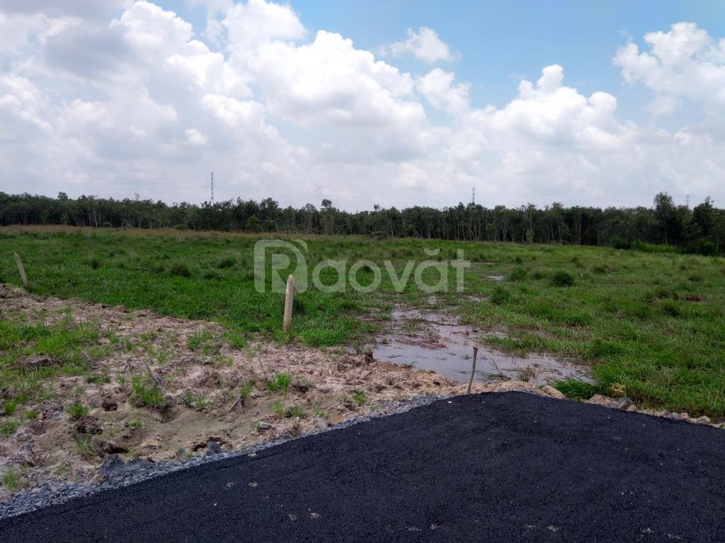 Bán đất giá rẻ mt Nguyễn Văn Khạ xã Phú Hòa Đông huyện Củ Chi.