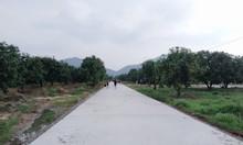 Bán 2 lô đất liền kề tại Ấp 1, Tóc Tiên, TX Phú Mỹ, BRVT.