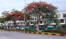 Cơ hội mua nhà đẹp, rẻ Bắc Ninh