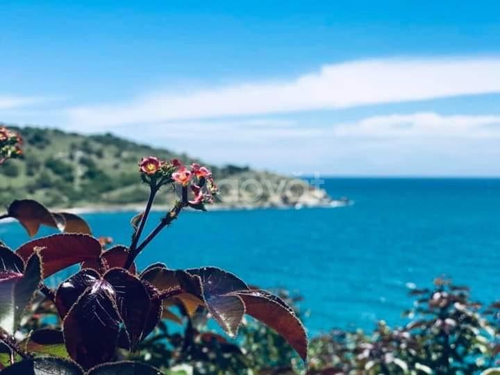 Tận hưởng hương vị của biển cả khi sở hữu đất nền Biển Cà Ná