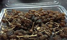 Cửa hàng bán sỉ lẻ nho khô nguyên cành tại Quận Tân Bình TP HCM