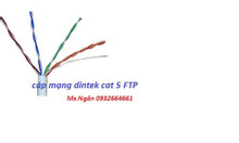 Cáp mạng dintek cat 5 FTP