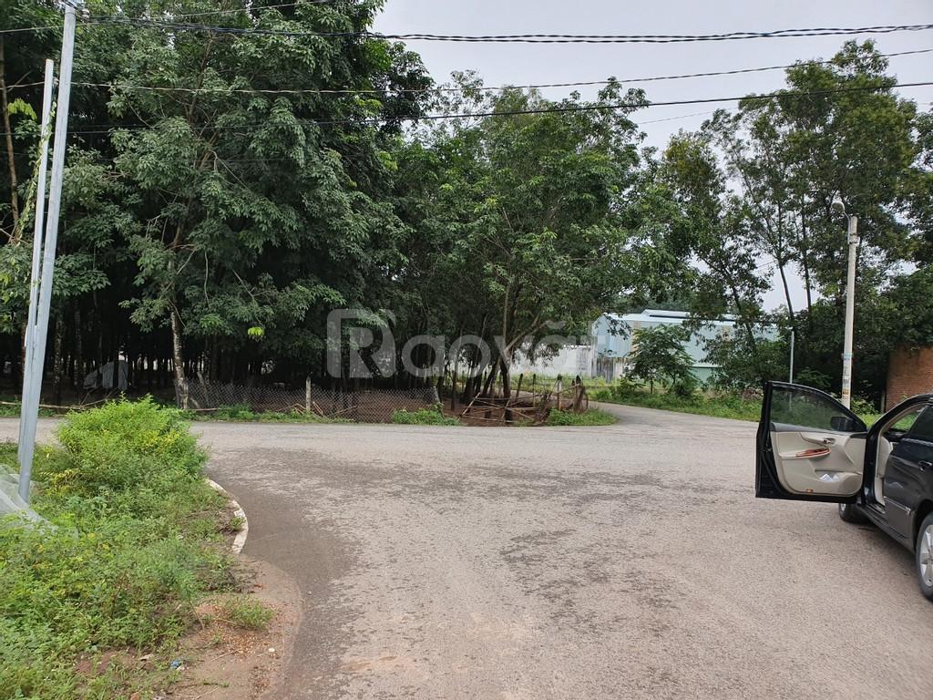 Bán gấp 2 lô đất kề nhau ở P.Định Hòa,Thủ Dầu Một giá chưa đến 10tr/m2