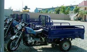 Xe ba gác chở thuê giá rẻ thị trường TPHCM