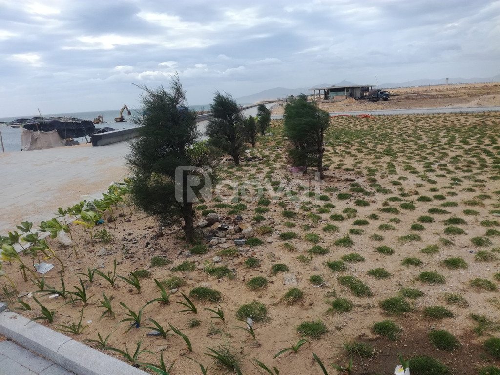 Chủ cần bán rẻ 2 lô đất biển, gần sân bay quốc tế và Vincom (ảnh 4)