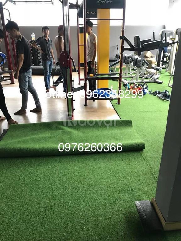 Thảm cỏ nhân tạo phòng võ thuật, thể thao