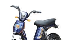 Dòng xe đạp điện cao cấp Bluera Bike