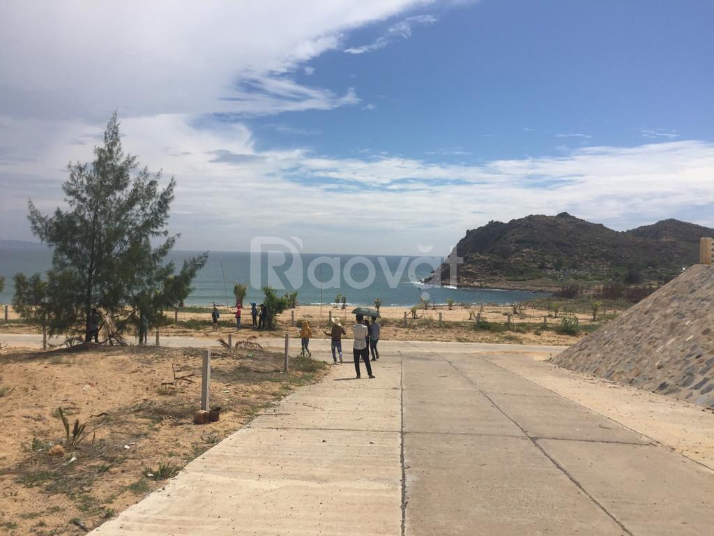 Đất nền biển Phú Yên: Đắc Địa – Đắc Lợi – Đầu tư ngay nhận chiết khấu  (ảnh 4)