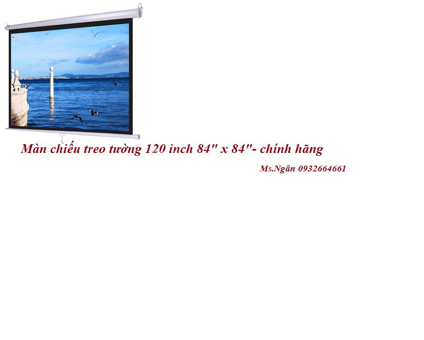 Màn chiếu treo tường 120 inch 84 x 84 chính hãng
