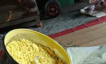 Máy xay thuốc bắc , xay dược liệu , xay ngũ cốc , xay nấm linh chi