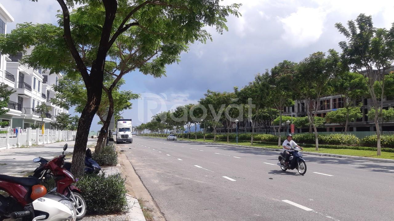 Bán đất thông Hoàng Thị Loan và Nguyễn Sinh Sắc
