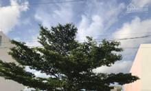 Cần bán gấp 250m2 đất thổ cư, ngay mặt tiền Đại lộ Trần Văn Giàu