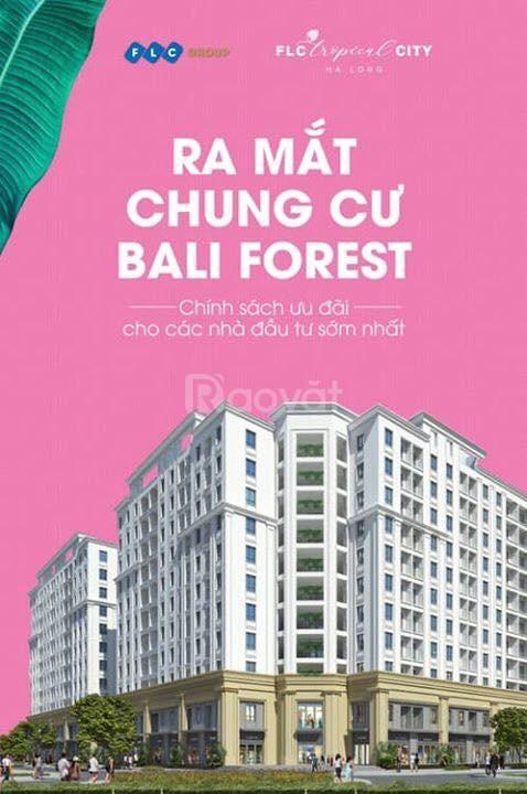 Chỉ 300 triệu sở hữu căn homestay view Vịnh Cửa Lục Hạ Long