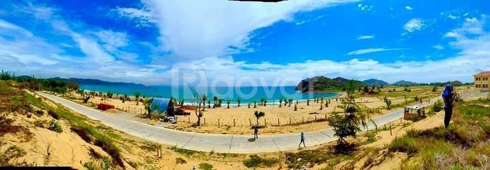 Đất nền khu dân cư Hòa Lợi Sông Cầu Phú Yên - Đất nền view biển