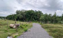 Bán gấp 2 lô đất mặt tiền đường Cây Trôm-Mỹ Khánh đi vào, full thổ 1tỷ