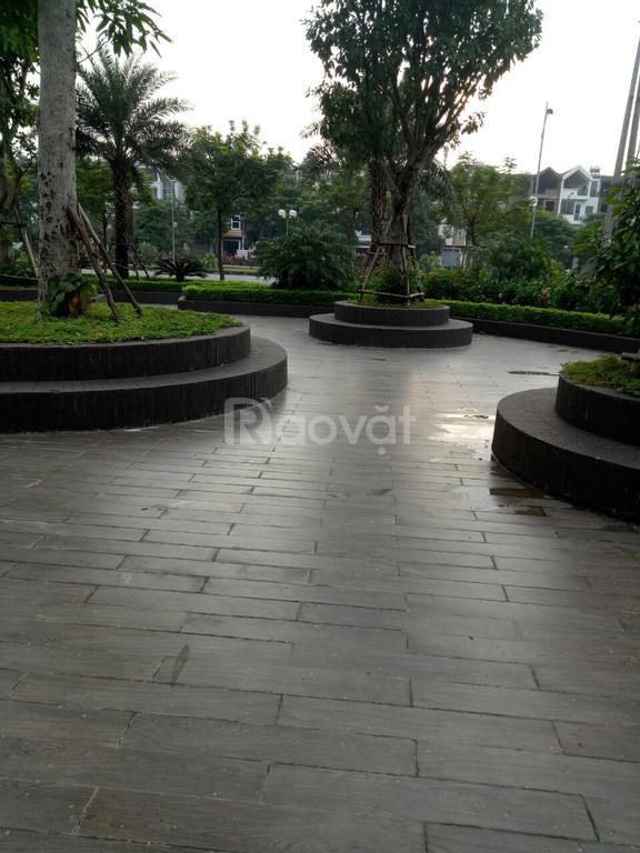 Căn hộ chung cư cạnh khu đô thị Việt Hưng - Vinhomes Riverside