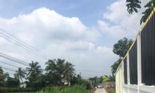 Bán nhà 1200m2, Xã Nhị Thành, Huyện Thủ Thừa, Long An