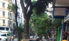 Cho thuê cửa hàng mặt phố Trần Nhân Tông, quận Hai Bà Trưng.