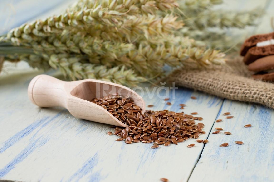 Mua hạt lanh Mỹ ở đâu tại Huyện Nhà Bè TpHCM - Flaxseed