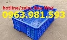 Sọt nhựa rỗng HS009 giá rẻ