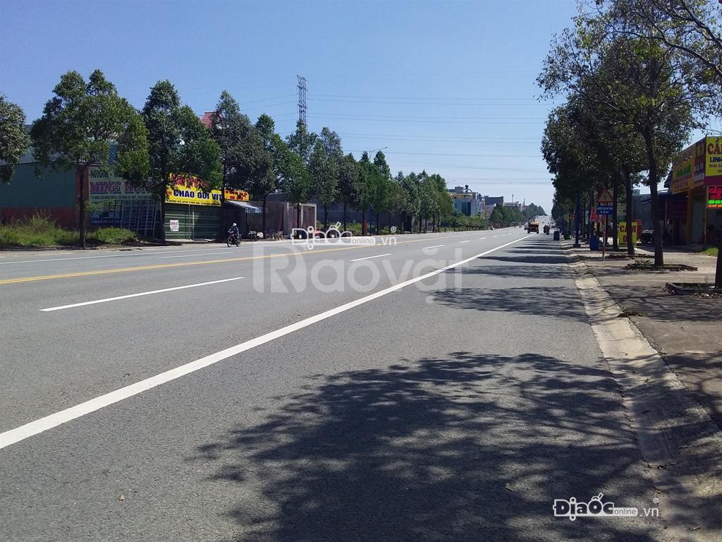Mở bán 38 lô đất KDC Tân Tạo, Bình Tân, giá rẻ cho nhà đầu tư