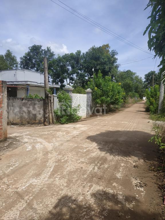 Chỉ 800 triệu/sào, 7770m2 đất tại xã Bàu Cạn