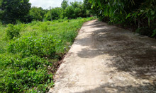 Bán nhanh lô đất thổ cư xã Phú Hòa Đông, 98.8m2, SHR, bao sang tên.