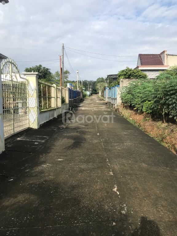 3.2 triệu/m2 giá thiện chí tôi cần bán 3 sào đất xã Bàu Cạn, L.Thành