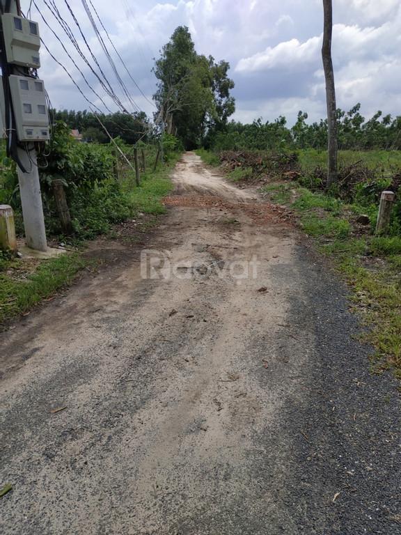 Cần bán 1.7 sào đất Long Phước,Long Thành SHR công chứng sang tên ngay