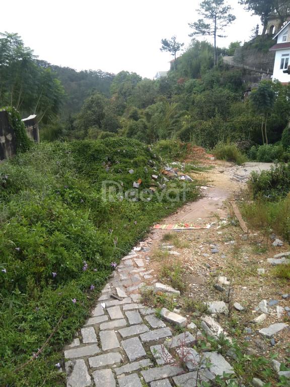 Bán đất Đà Lạt 1510 m2 mặt tiền đường Hoàng Hoa Thám view núi rừng