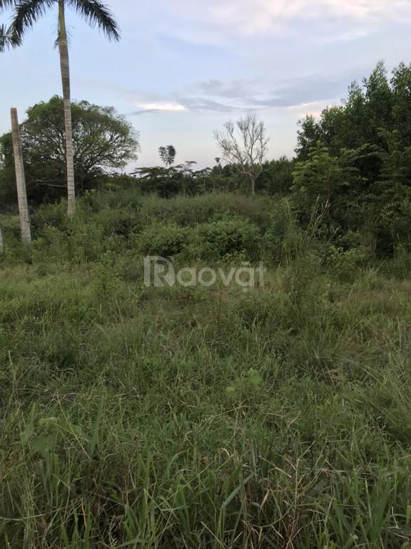 Cần bán rất gấp 614m2 đất gần mặt tiền đường Bàu Cạn, chỉ 3.5 triệu/m2