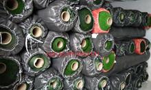 Bán thảm cỏ nhựa giá rẻ tại TP HCM