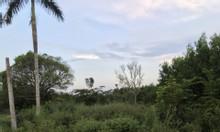 Đất sạch SHR Long Phước, sân bay Long Thành chỉ 3.2 tr/614 m2