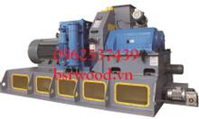Máy ép viên nén mùn cưa BSR720 2.5-3T/H 220KW Không mỡ bôi trơn