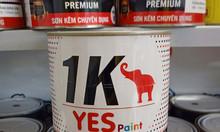 Chuyên cung cấp sơn kẽm chuyên dụng xám đậm xingfa lon 800g