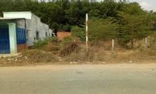 Cả khu vực chỉ còn 1 miếng, TL8 – Thị trấn Củ Chi