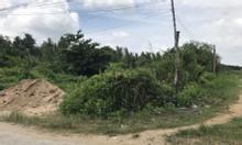 Cần bán gấp 360m2 đất trồng cây lâu năm đường 12 Nguyễn Văn Tạo