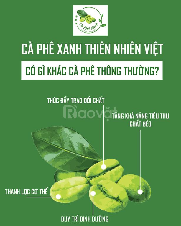 Cà phê xanh kháng mỡ Thiên Nhiên Việt giúp giảm cân hiệu quả