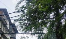 Cho thuê nhà mặt ngõ ôtô phố Thành Công, quận Ba Đình dt 200m2