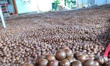 Siêu thị bán Hạt Macca Úc tại Quận Thủ Đức Tphcm - HTFOOD
