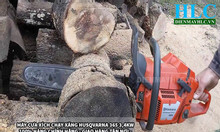 Máy cưa xích, máy cưa gỗ, máy cưa cây Husqvarna nhập khẩu