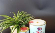 Chuyên phân phối sơn taiyang 2 thành phần màu xám xingfa