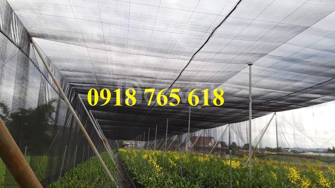 Lưới che nắng Thái Lan, Đài Loan nhập khẩu giá rẻ (ảnh 1)