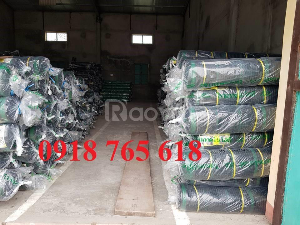 Lưới che nắng Thái Lan, Đài Loan nhập khẩu giá rẻ (ảnh 3)